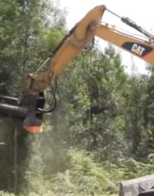 https://tmccancela.com/contenido/uploads/2016/10/tmccancela_28-thf-trituradora-forestal-220x280.jpg